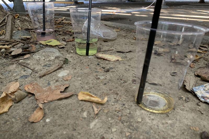Novara Green al lavoro in centro: raccolti 30 kg di rifiuti della movida